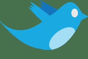 [ Twitter Bird ]