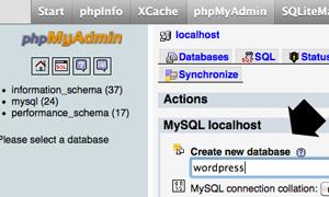 MAMP WP Database