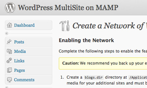 WordPress Enable Network