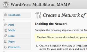 WordPress Enable Network