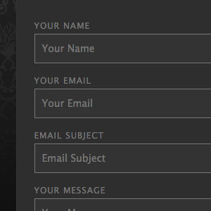 [ Contact Form X: Dark Theme ]