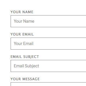 [ Contact Form X: Synthetic Theme ]