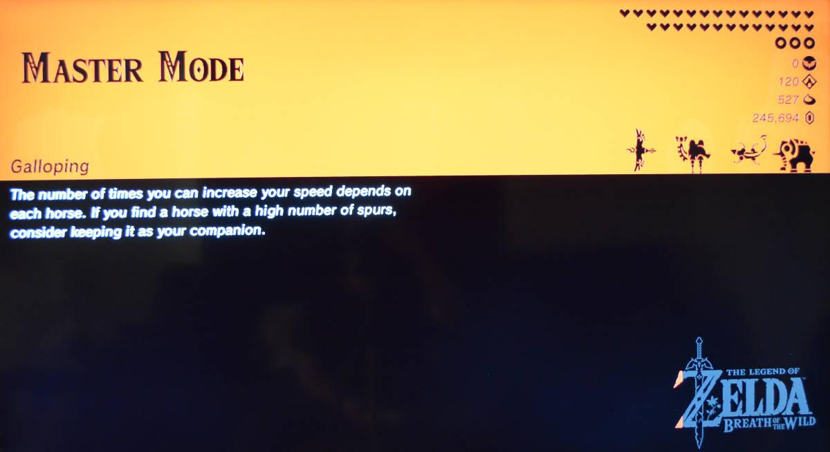 BotW Master Mode loading screen