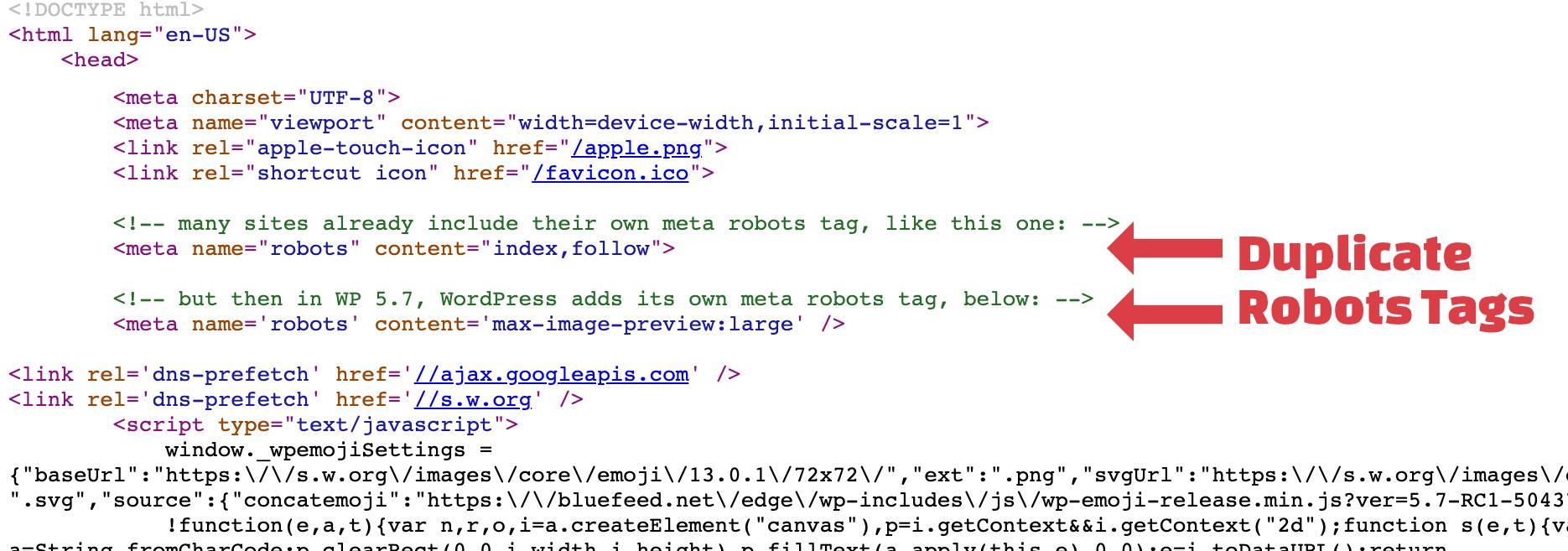 Screenshot showing duplicate robots meta tags