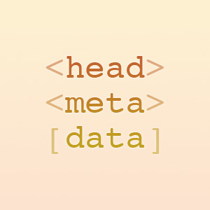 WordPress Plugin: Head Meta Data